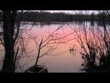 Жанна Бичевская - Закатилася зорька за лес