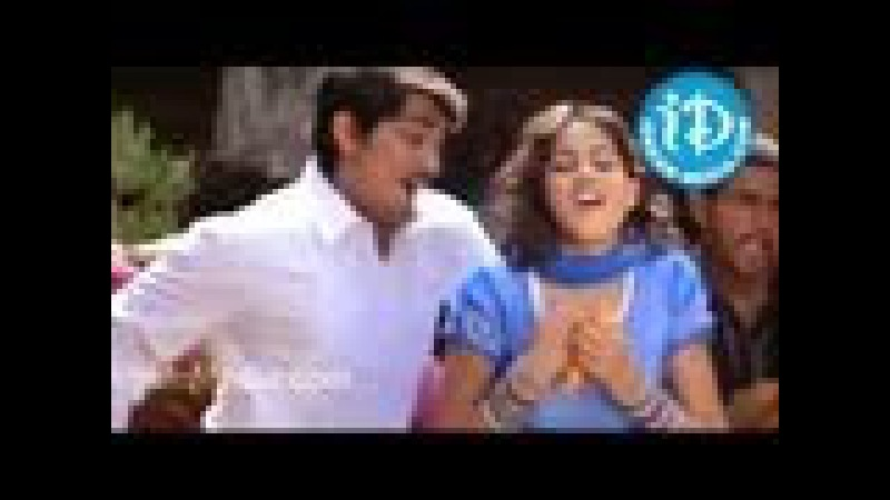 Laloo Darwaja Video Song Bommarillu Movie Siddharth Genelia