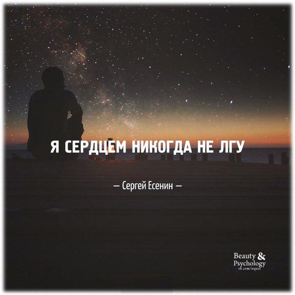 картинки мотивашки Я сердцем никогда не лгу  С.Есенин