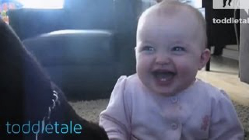 Baby Girl Laughing Hysterically at Dog Eating Popcorn | Laughing Babies | toddletale