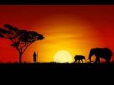Африканская музыка расслабляющий - Холод (1 час)