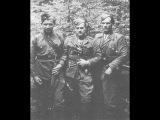 Операція Вісла Закерзоння - українська повстанська армія. історія нескорених