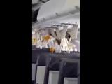 Видео из салона самолёта, который после взрыва летел с дырой в фюзеляже
