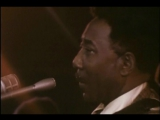 Muddy Waters - Live at Oregon University (1971)