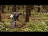 Охота на трюфели 1 Сезон  1 Серия Discovery Channel