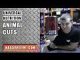 MG Обзор - Жиросжигатель Animal Cuts (Universal Nutrition) - MassiveGym.com