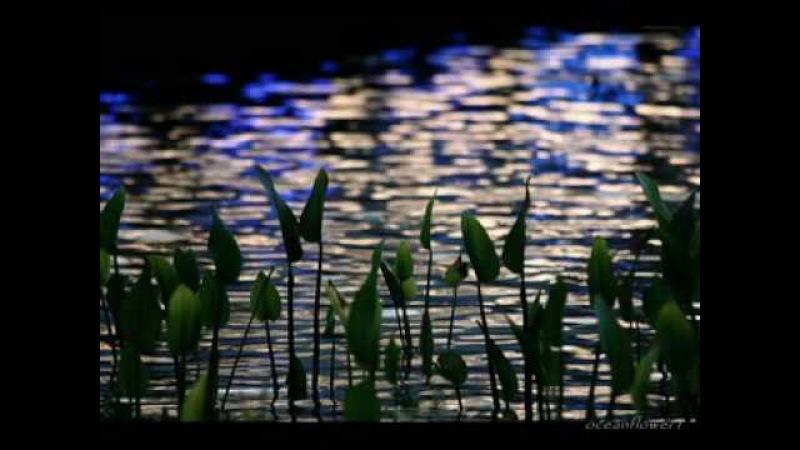 ERNESTO CORTAZAR - Blue Waters