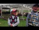 Шоро-Башатта кыргыз-казак акындардын айтышы финал. Ким Кыргыз болсо озубудун акы