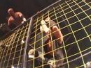 CZW Cage of Death XI (2009) - Sami Callihan vs. Danny Havoc