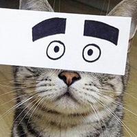 nikey avatar