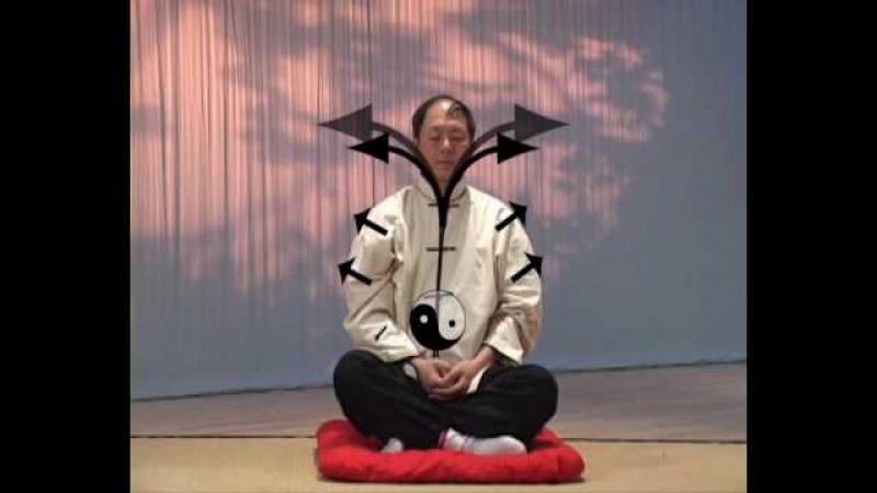Understanding QiGong and Qi 1 3