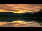 sunrise, Sounds of Nature, forest 4 hd 1080p