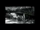 Документальная камера. Тревожные ландшафты природы (2006)