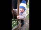 Егор рубит капусту