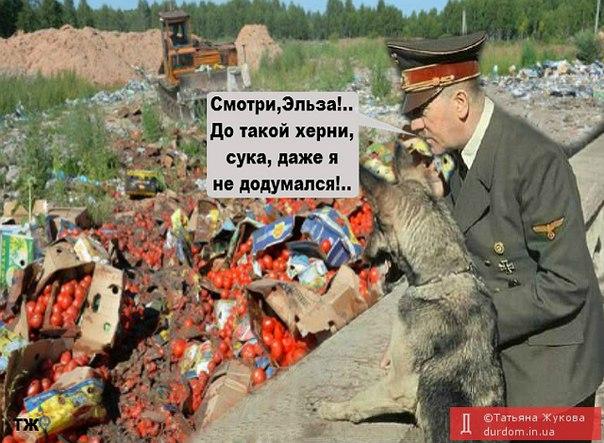 Найем: 26 сентября начнется создание новой полиции Донбасса - Цензор.НЕТ 5370