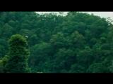 Спасительный рассвет / Rescue Dawn (2006)