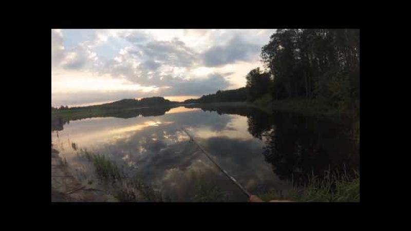 Ловля летней щуки на водоеме в Калужской области на CrackJack 78SP-SR