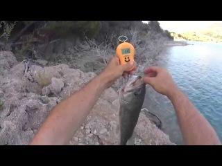 Отчет о рыбалке . Просто хорошая рыбалка.