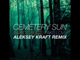 Cemetery Sun - (Hard Drugs) Fake Love (Aleksey Kraft Remix)