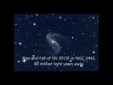 The Rise and Fall of Supernova 2015F