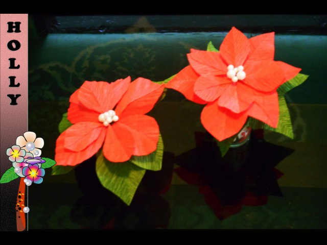 How To Make Paper Flowers : Poinsettia
