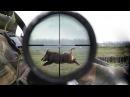 охота на кабанов часть 2 нарезка точных выстрелов