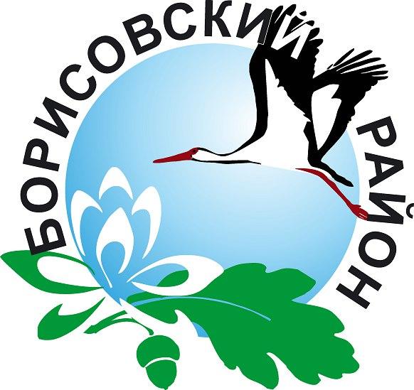 В Борисовском районе наблюдается отрицательный прирост населения и увеличение числа разводов