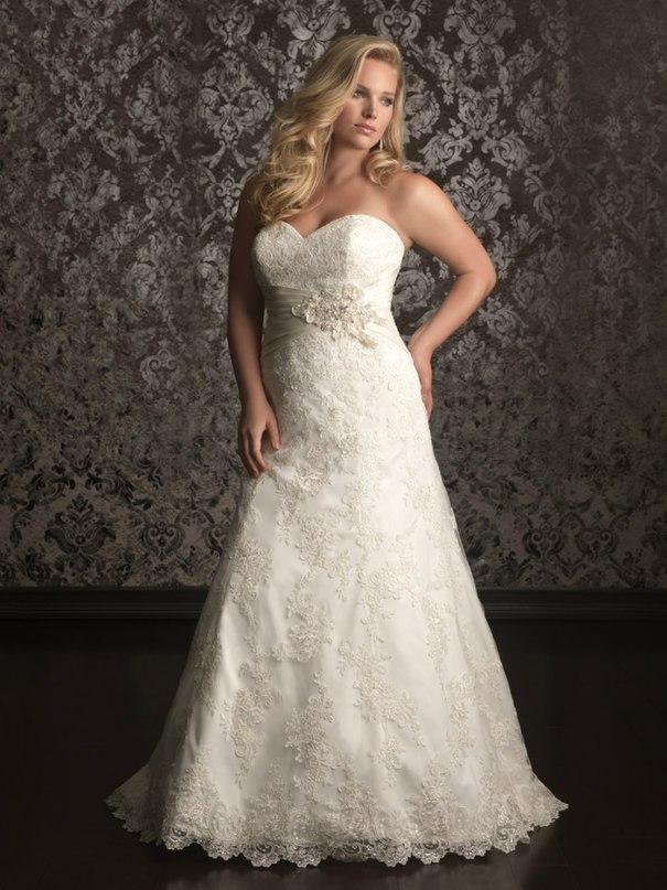 IVBtK23uwLY - Свадебные платья Allure Bridals коллекции 2016