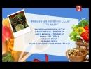 Готовим салат Гуджари на 8 канале