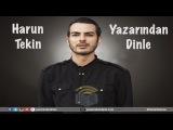 Harun Tekin - Yazar