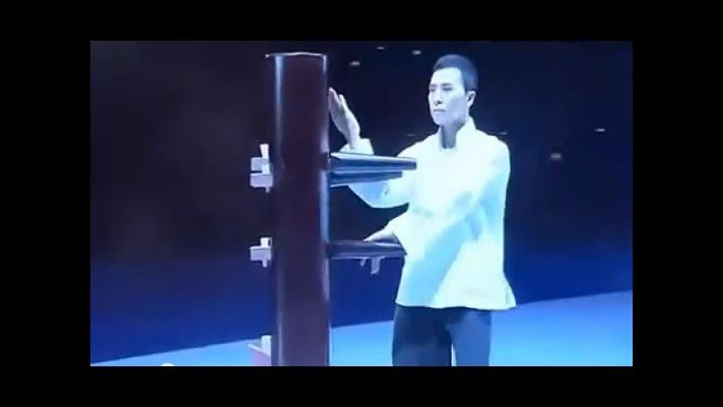 Donnie Yen Wing Chun and Tai Chi performance/ Донни Йен : демонстрация тайцзи и винчунь