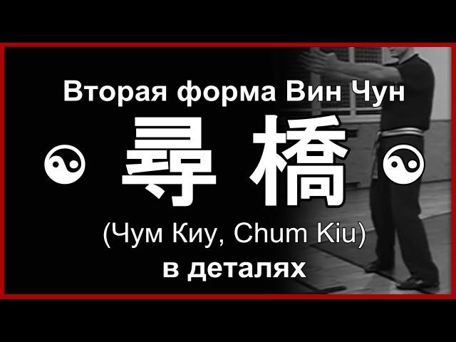 Форма Вин Чун Чам Киу в деталях Сhum Kiu Wing Chun А Белощин