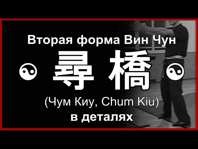 Форма Вин Чун «Чам Киу» в деталях | Сhum Kiu Wing Chun