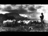 OMFO - Magic Mamaliga (Afgo &amp Mentol Remix)