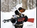 Huntin' Dog Part 2 WABBIT SEASON Crusoe Dachshund