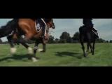360p Боевой конь   Warhorse (трейлер-отрывок  рус )