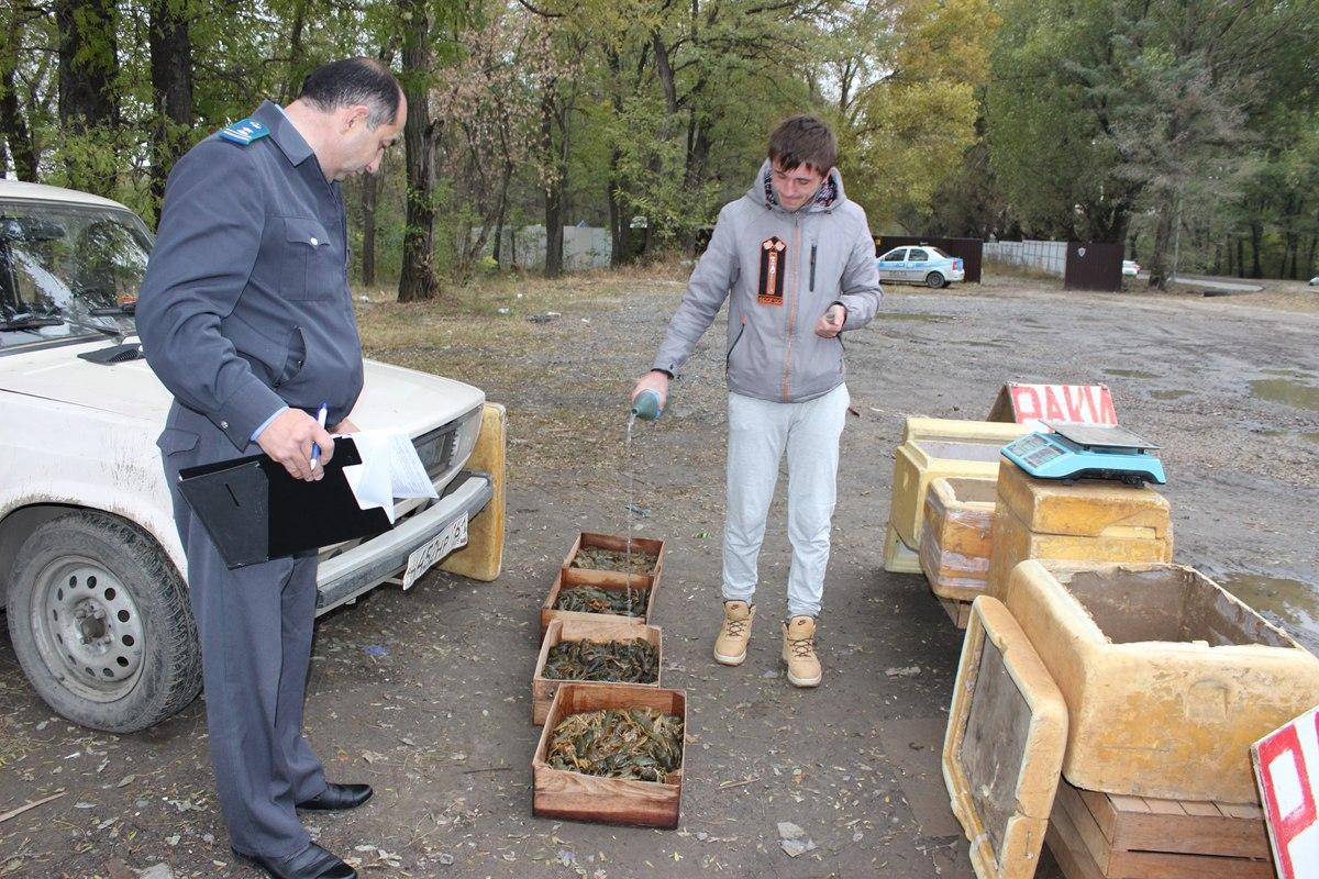 В Ростовской области задержали 93 кг раков без ветеринарных сопроводительных документов