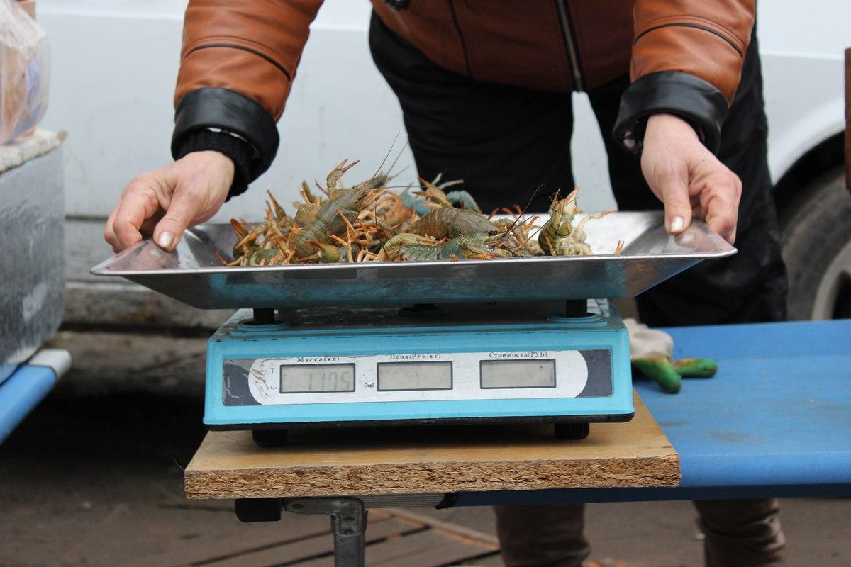 В донской столице ветинспекторы уничтожили 80кг раков и рыбы