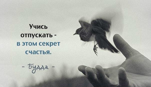 http://cs629125.vk.me/v629125534/669e/ovqpMQtnNRk.jpg