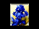 «Цветы - алмазная вышивка» под музыку Диана Арбенина - Ты дарил мне розы.