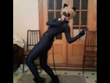 """Gehe on Instagram- """"send help Chat Noir is too fun to cosplay. Guys please watch Miraculous Ladubug as soon as its dubed-availab"""