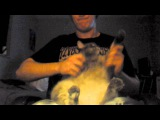 Rings Of Saturn - Seized And Devoured (Death Metal Fat Cat Drum Cover)