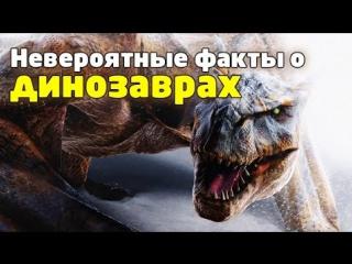 Это интересно 159: Самые невероятные факты о динозаврах