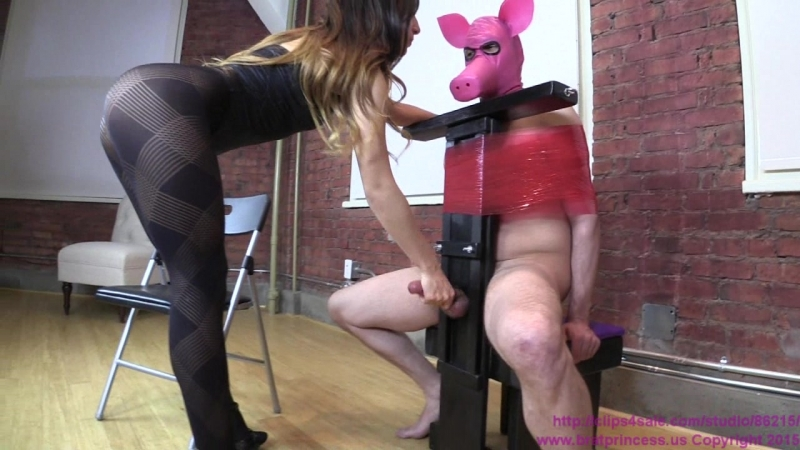 Alexa Rydel Punches Pigs Balls and Ruins its Orgasm ( Mistress, Female, Domination, Femdom, Handjob,