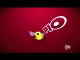 Pulcino Pio (Radio Globo)