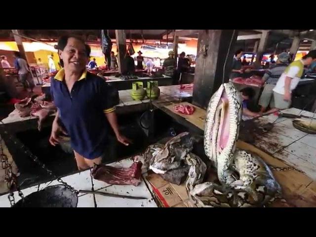 Индонезия. Уникальный репортаж с острова Ява. 15 серия | Мир Наизнанку - 5 сезон