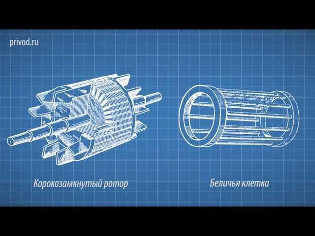 Модуль №3. Принцип работы асинхронного электродвигателя.