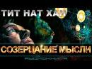 ॐ Тит Нат Хан - Созерцание мысли (аудиокнига) | ЭЗОТЕРИКА | БУДДИЗМ | МЕДИТАЦИЯ