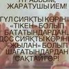 Айко Шынгисова