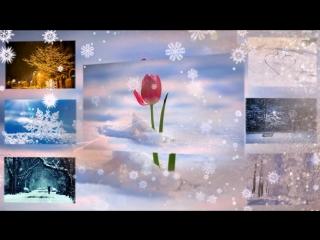 Снег кружится летает, летает И поземкою клубя Заметает, зима, заметает Все, что было до тебя